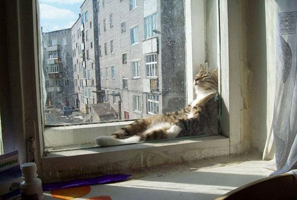 He Sun Is Sssoooo Warm