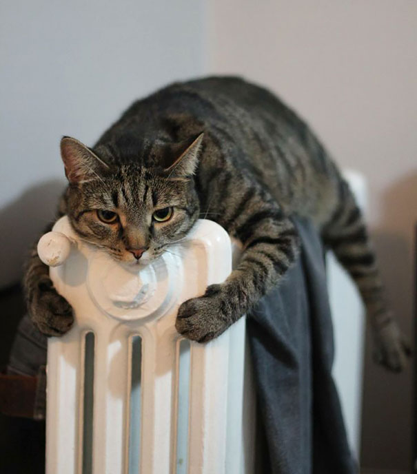 This Is My Heater. There Are Many Like It, But This One Is Mine