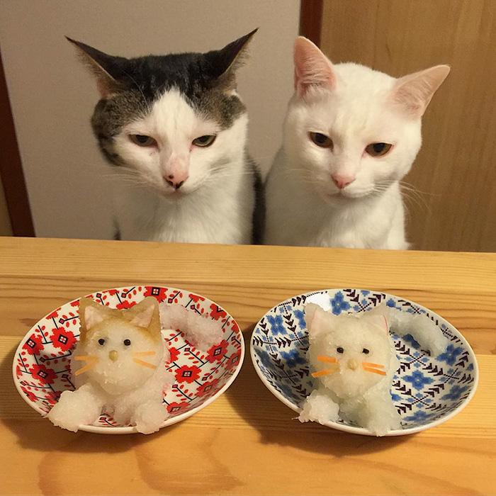 cats-watching-people-eat-naomiuno-12