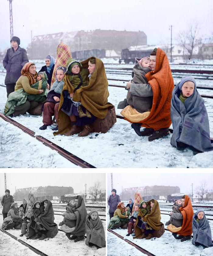 Polish Refugees