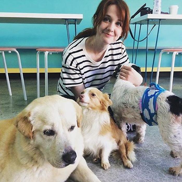 dog-cafe-adoption-sarah-wolfgang-los-angeles-16