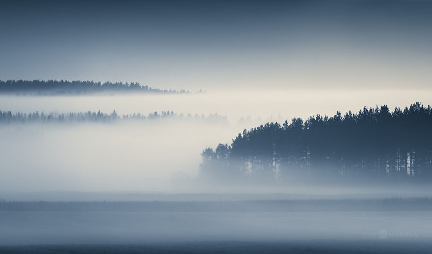 Ethereal Silence: I Photographed Finnish Forests And Trees
