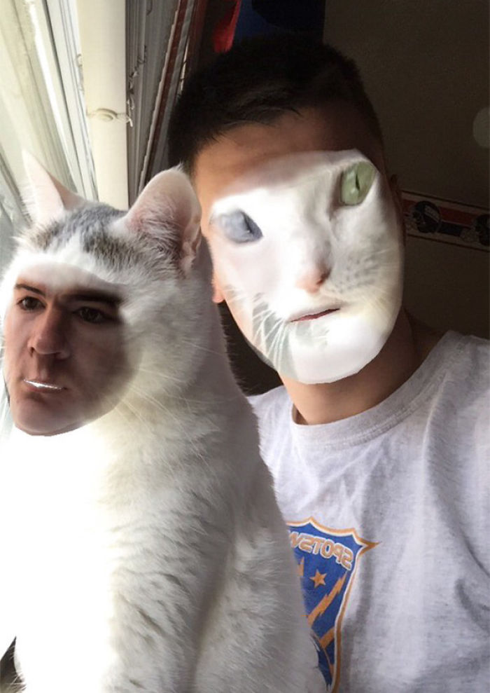 When You Face Swap With Your Cat