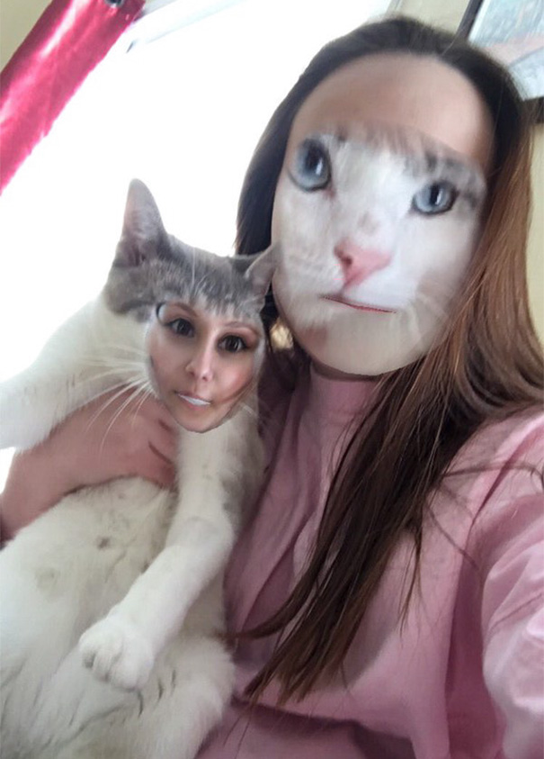 Face Swap With My Kitty