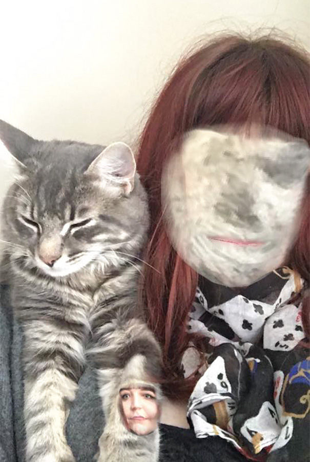 Spent Ages Trying To Face Swap With My Cat, This Was The Result