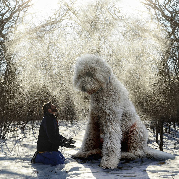 giant-dog-photoshop-adventures-juji-christopher-cline-1
