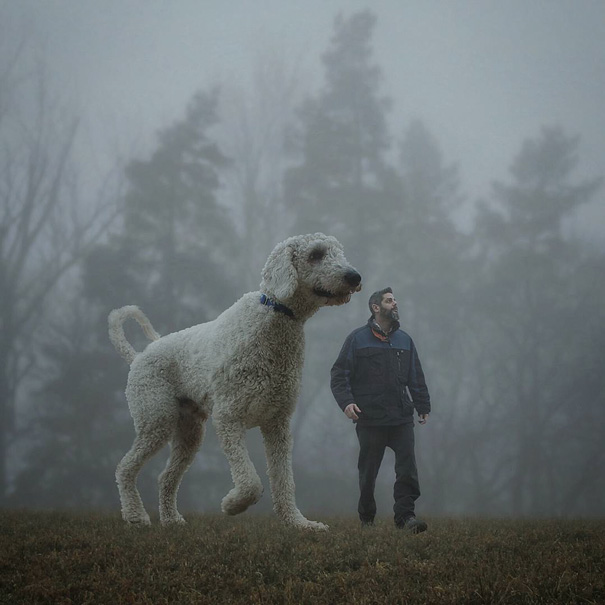 giant-dog-photoshop-adventures-juji-christopher-cline-201