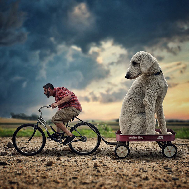 giant-dog-photoshop-adventures-juji-christopher-cline-33