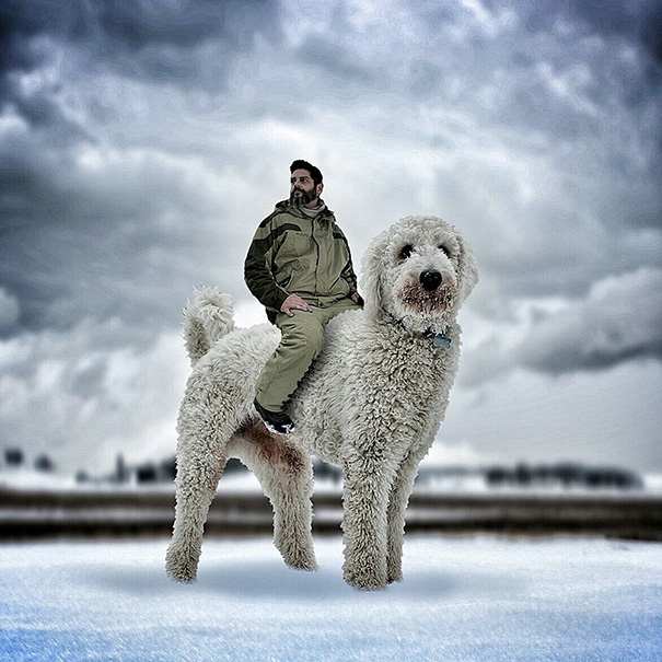 giant-dog-photoshop-adventures-juji-christopher-cline-4