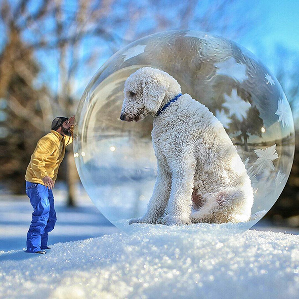 giant-dog-photoshop-adventures-juji-christopher-cline-75
