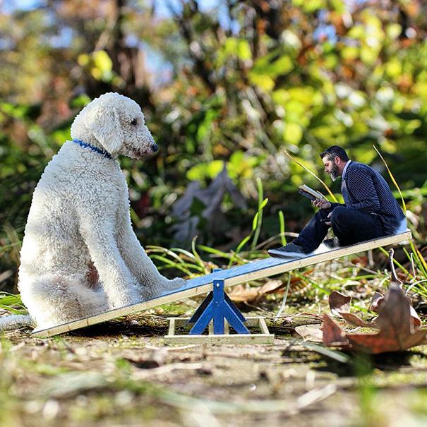 giant-dog-photoshop-adventures-juji-christopher-cline-79