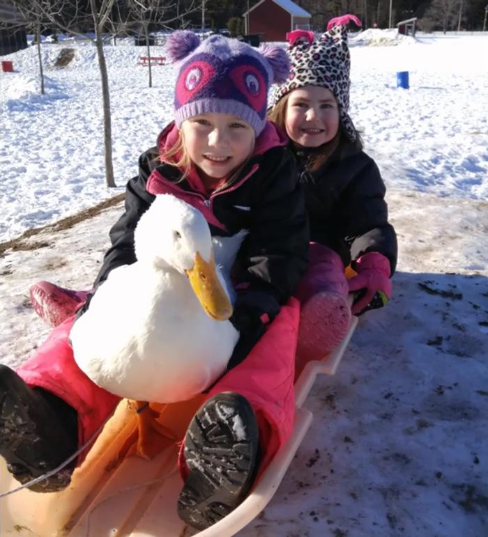 girl-best-friends-duck-snowflake-kylie-brown-21