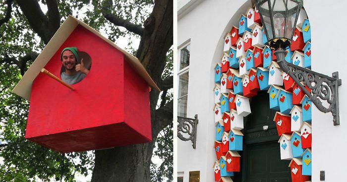 Construcción de birdhouses manera barata de ayudar a las aves nativas | Noticias Deseret