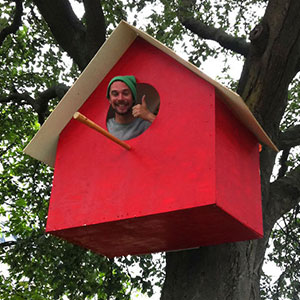 I Made 3500 Birdhouses From Scrapwood To Keep Birds In Cities