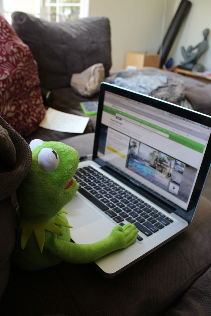 I Make My Kermit Doll Go On A Well Needed Vacation