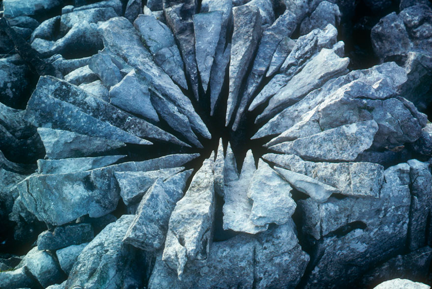 land-art-andy-goldsworthy-20