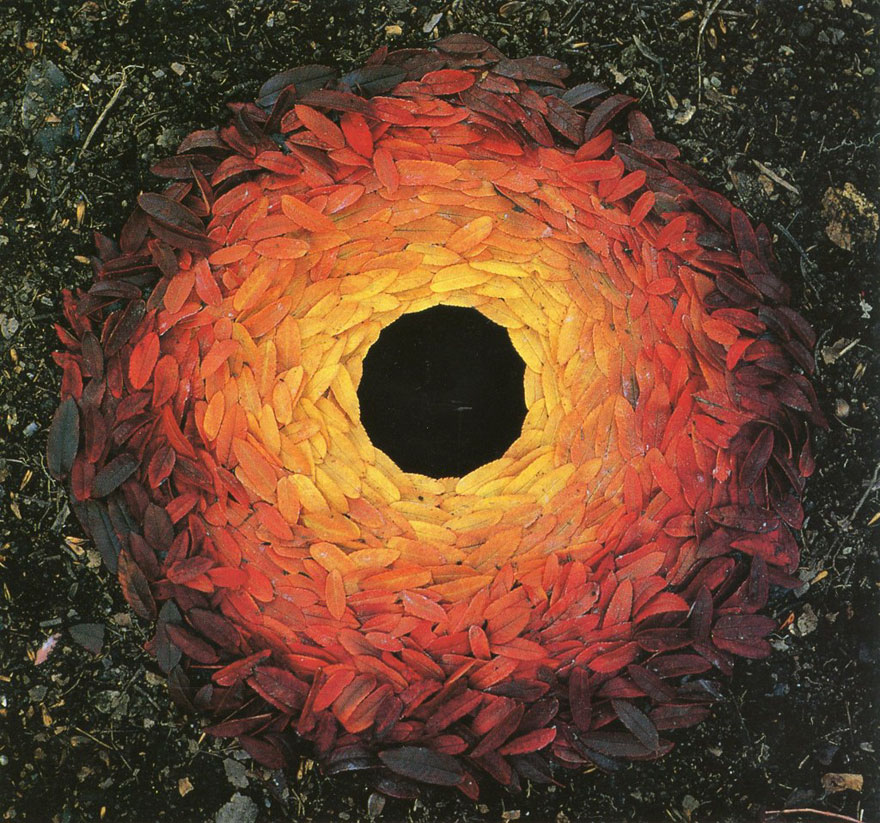 Resultat d'imatges de andy goldsworthy land art