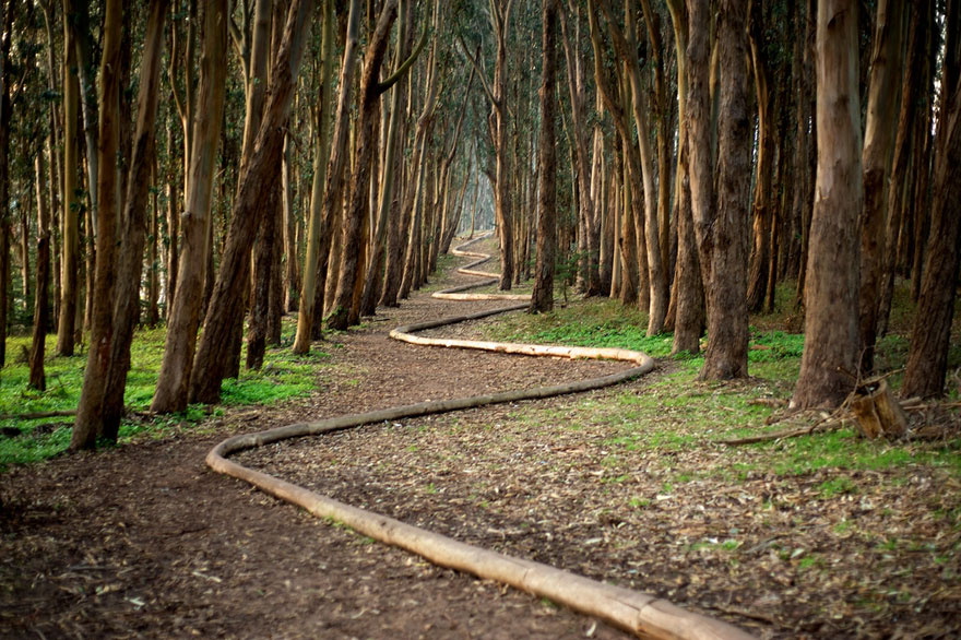 [Reflexion] Les oeuvres qui vous inspirent - Page 4 Land-art-andy-goldsworthy-261