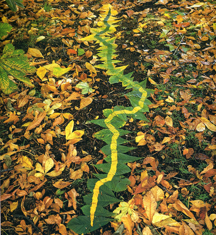 Magical Land Art By Andy Goldsworthy | Bored Panda