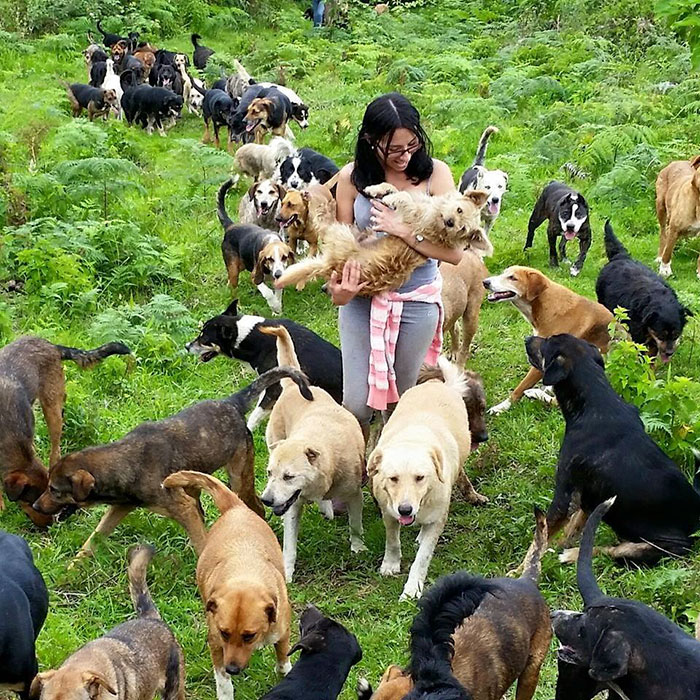 land-of-stray-dogs-territorio-de-zaguates-costa-rica-11
