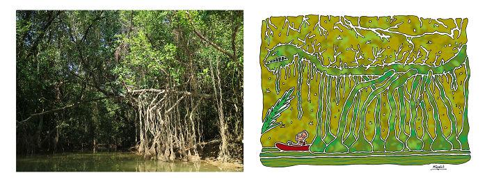 Mangrove Monsters