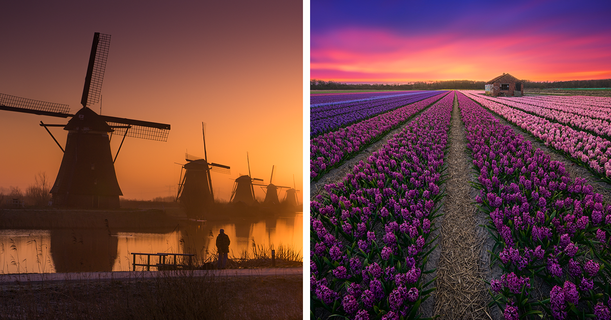 20+ Reasons Why You Should Visit The Netherlands, My Homeland