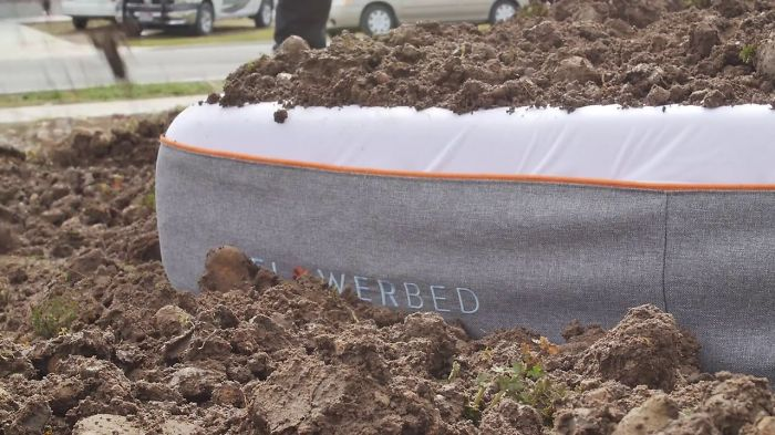 The World's First Plantable Mattress Comes Infused With Seeds
