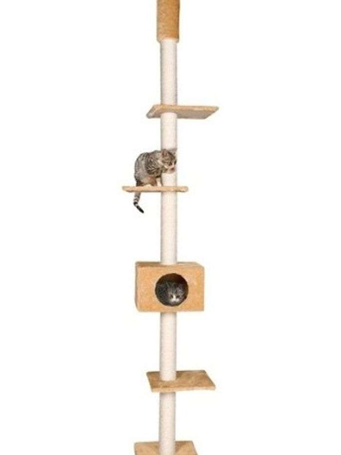 The Cometa Floor-to-ceiling Cat Tree