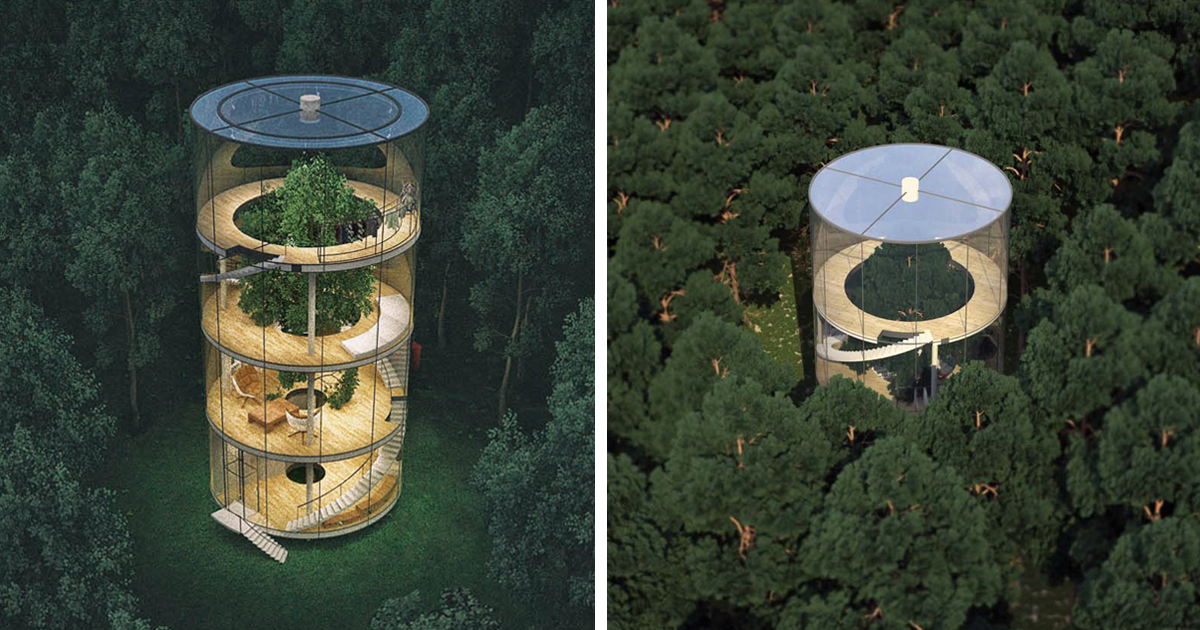 Stunning Tubular Glass House Built Around Tree