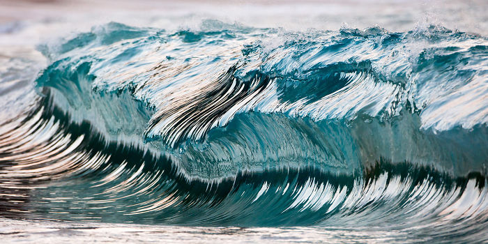 Being Unable To Surf After A Plane Crash, I Started To Photograph Waves