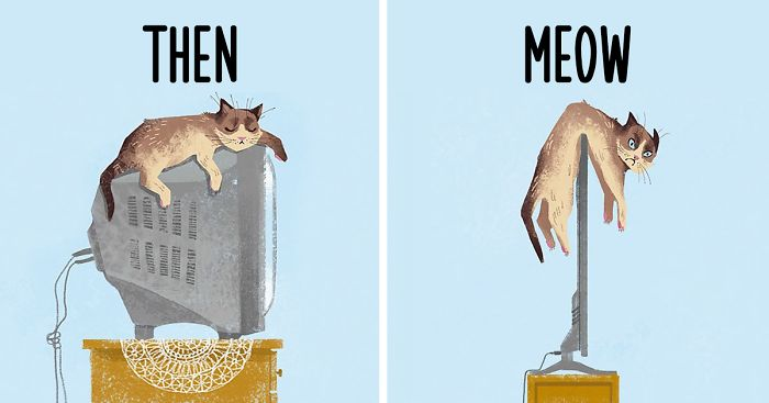 Cats-then-now-funny-technology-change-life-fb__700-png.jpg