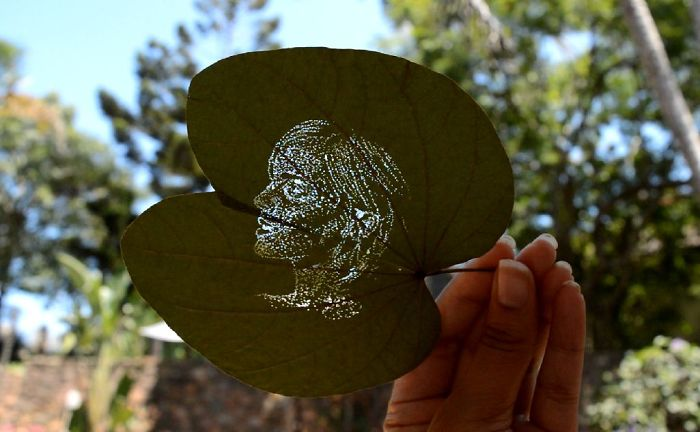 I Create Detailed Portraits On Leaves By Making Tiny Holes