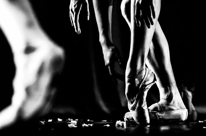 My Photos Let The Ballet Speak