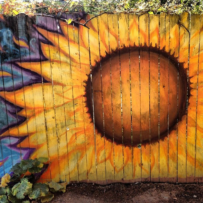 15 people who took their backyard fences to another level for Mural art designs
