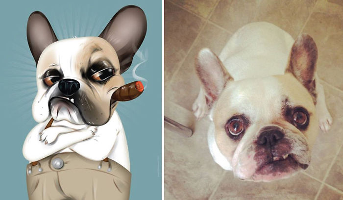 I Draw Pet Portraits Inspired By How Their Owners Describe Them
