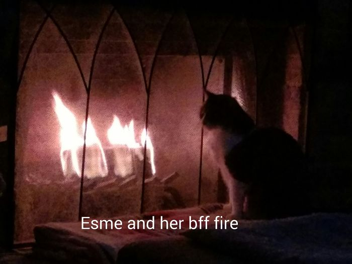 Esmeralda And Her Best Friend Fire