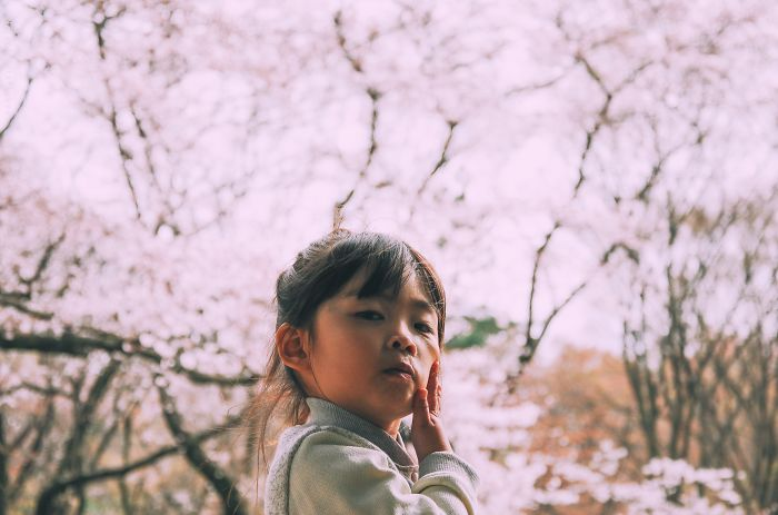 I Was Lucky To Capture The People Of Tokyo In The Boom Of Cherry Trees Blossoming
