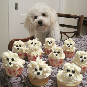 Would You Like Some Pupcakes