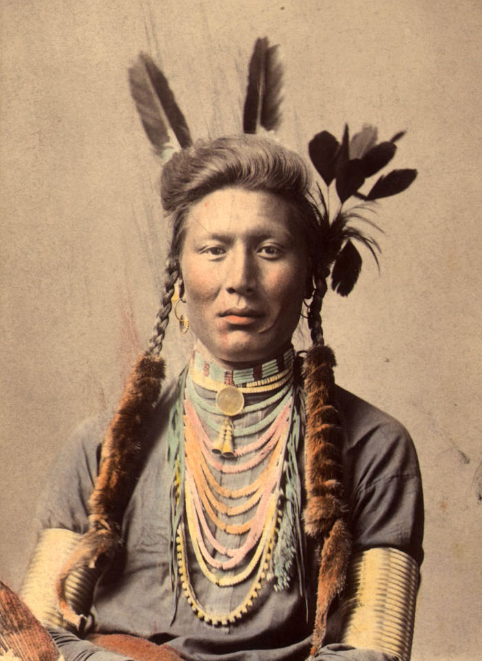 Old Coyote (aka Yellow Dog). Crow. Original Photo Circa 1879 (color Tinted Circa 1910)