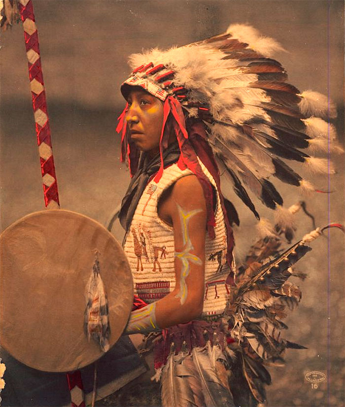 Charles American Horse (the Son Of Chief American Horse). Oglala Lakota. 1901. Photo By William Herman Rau