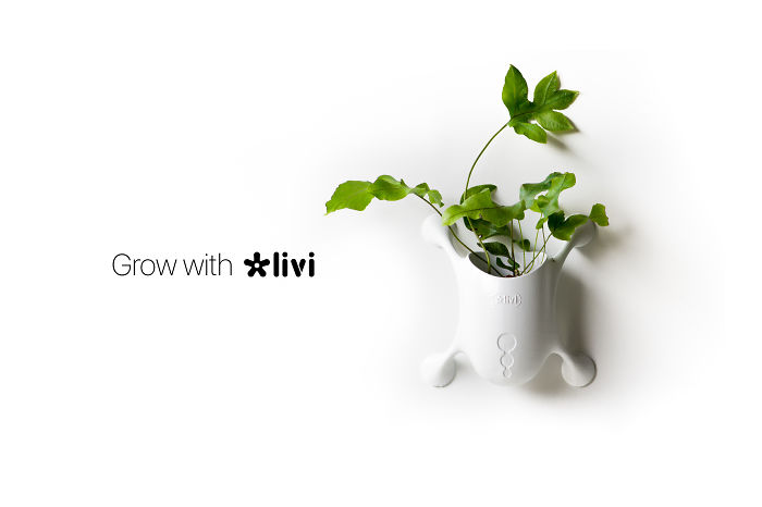 Grow With Livi: Your Favorite Plants, Everywhere.