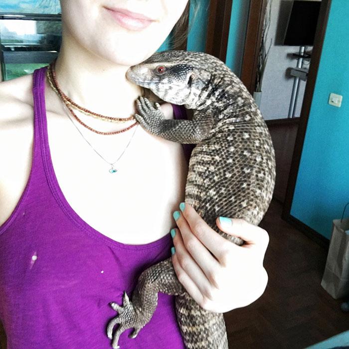 cute-lizard-pet-cuddles-savannah-monitor-astya-lemur-47