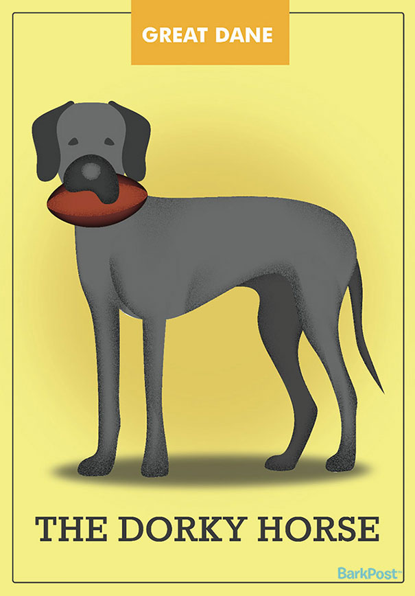 Dog Breed Illustrations