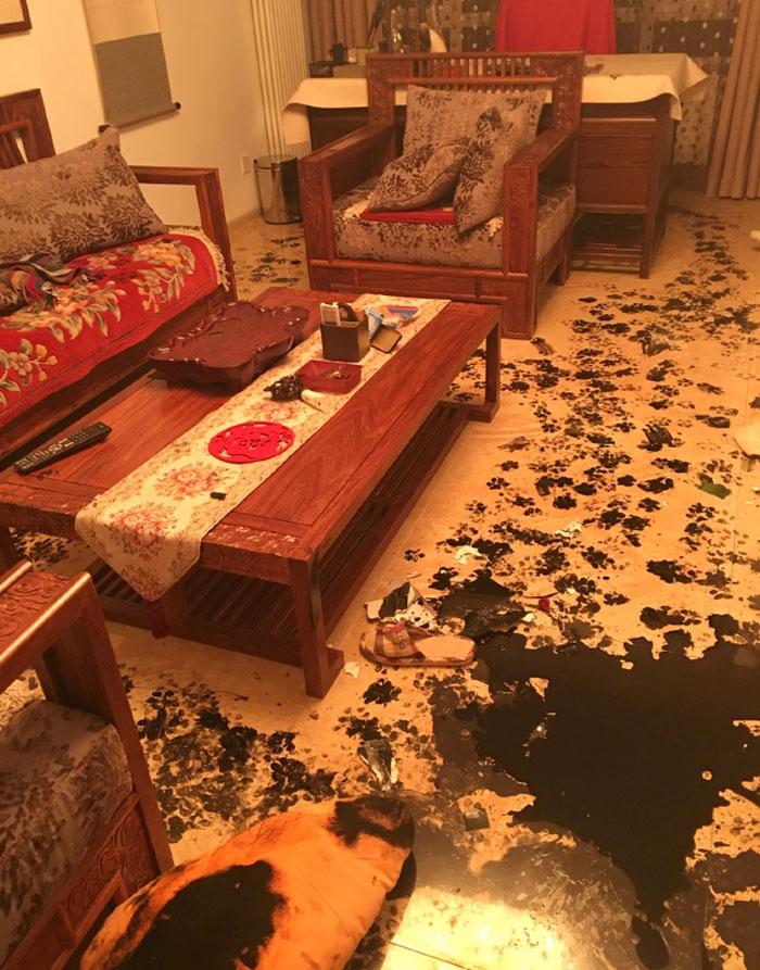 dog-makes-mess-ink-10