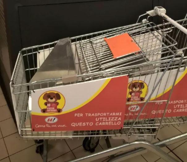 dog-rides-cart-supermarket-unes-italy-4