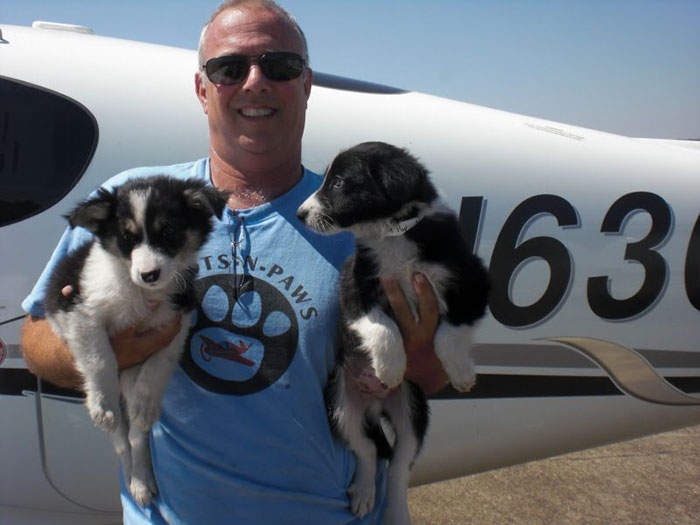 flying-animals-plane-jeff-bennett-pilots-n-paws-14