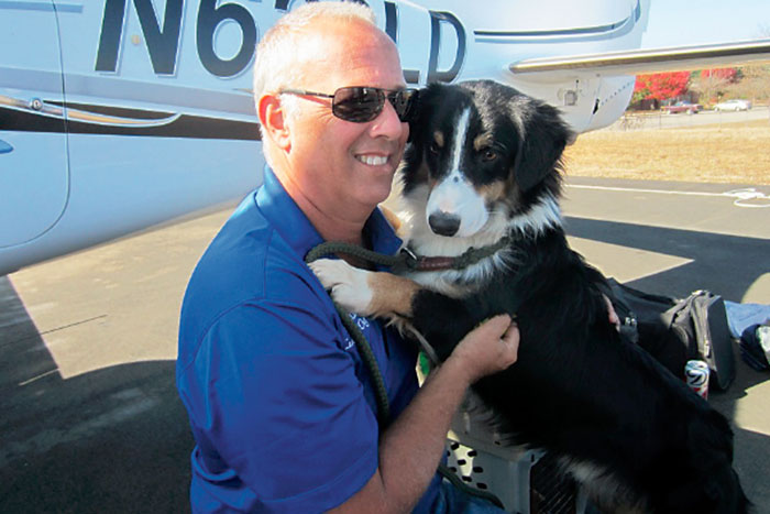 flying-animals-plane-jeff-bennett-pilots-n-paws-19