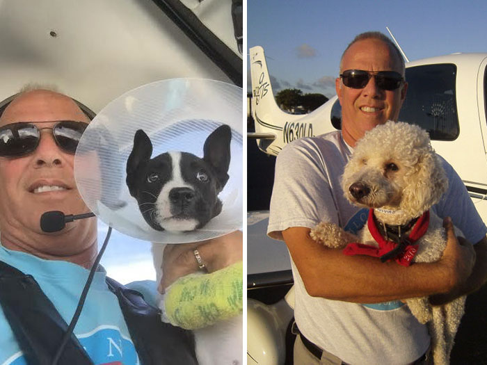flying-animals-plane-jeff-bennett-pilots-n-paws-25