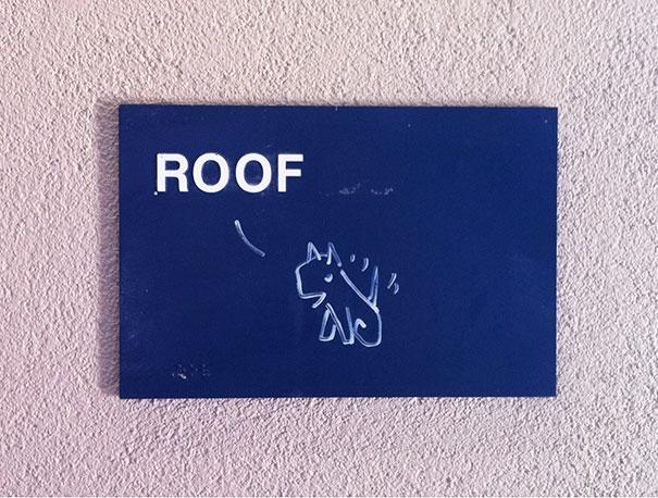 Barking Sign