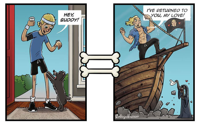 How Dogs See The World Differently